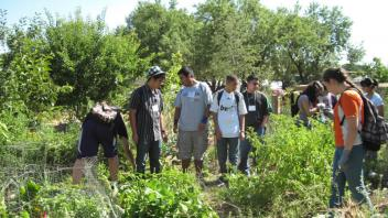 High school students planted and harvested vegetables, and learned about nutrients