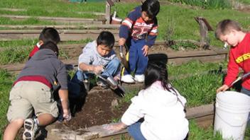 Students help prepare the soil for planting seeds