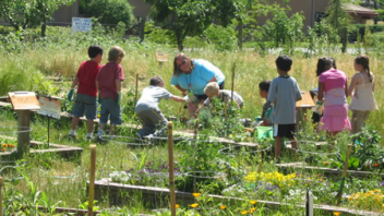 Students participated in hands-on activities in the garden