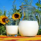 a pitcher of milk next to sunflowers