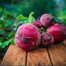 close up of beetroot
